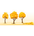 autumn trees set vector image vector image