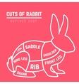 Rabbit cuts diagram for Butcher shop vector image