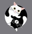 yin yang cats sleep vector image