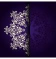 Elegant background lace medallion vector image vector image