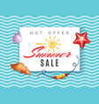 hot offer summer sale vector image vector image