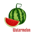 Watermelon fruit icon vector image