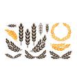 ear wheat bread logo or label harvest bakery vector image