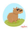 cartoon of wild animal vector image vector image