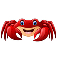 Cartoon red marine crab vector image vector image
