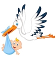 Cartoon stork carrying baby vector image