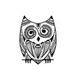 ornate owl zenart for your design vector image vector image