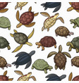 sea turtle animals seamless pattern background vector image vector image