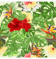 seamless texture tropical background hibiscus vector image vector image