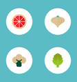 set of dessert icons flat style symbols with onion vector image