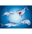 set scary sharks in cartoon style vector image