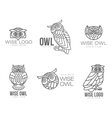 Set of black and white owl logo templates vector image