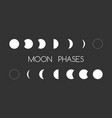 astrology moon shapes vector image vector image