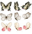 beautiful watercolor butterfly collection vector image vector image