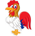 cartoon chicken rooster posing vector image vector image