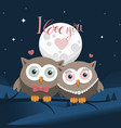 couple of owls in love at night with message vector image vector image