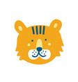 cute funny tiger face or head adorable cartoon vector image vector image