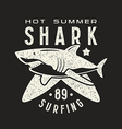 graphic design for t shirt with image shark vector image