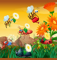 scene with plants and insects in garden vector image vector image