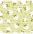 seamless pattern with cotton plant vector image vector image
