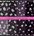 set of skull seamless patterns vector image