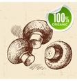 Hand drawn sketch vegetables mushrooms Eco food vector image