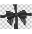 black ribbon 3d realistic ribbon isolated on vector image