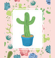 cactus on pot over desert plants background vector image vector image