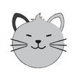 cat cartoon pet animal icon image vector image vector image