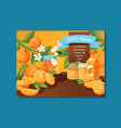 citrus fresh orange fruit backdrop and organic vector image