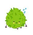 cute funny marijuana weed bud character sleep vector image vector image