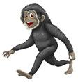 Gibbon vector image