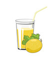 glass with melon juice vector image