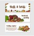 nuts and seeds collection hand drawn elements vector image vector image