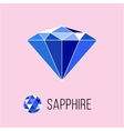Sapphire flat icon with top view Rich luxury vector image vector image