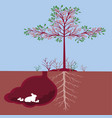 tree with bunny vector image