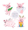cute pigs vector image vector image