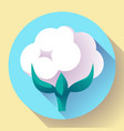 flat cotton icon vector image vector image