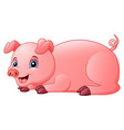 little pig are happy vector image vector image