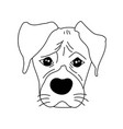 monochrome boxer dog cute head and expression vector image vector image