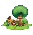 Two lions with a wooden signboard vector image vector image