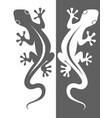 2 lizards vector image