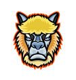 Angry alpaca head mascot vector image