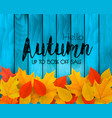 autumn sale background with colorful leaves on vector image vector image