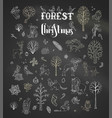 forest christmas set on blackboard background vector image vector image