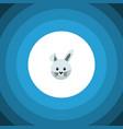 isolated rabbit flat icon bunny element vector image