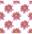 pink water lily seamless pattern vector image