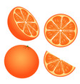 set of orange slices isolated on white background vector image vector image