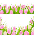 spring pink borders set vector image vector image