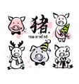 year pig vector image vector image